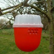Droso trap |  Piège pour mouches des fruits (Drosophila Suzukii)