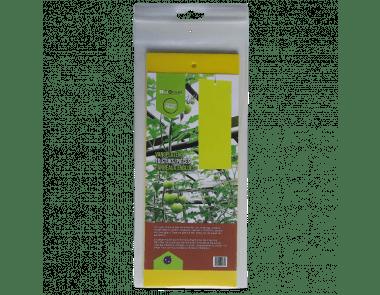 Gele kleefplaten tegen witte vlieg