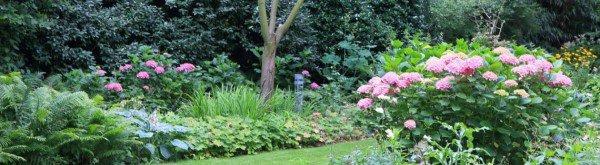Wat is een natuurlijke tuin?